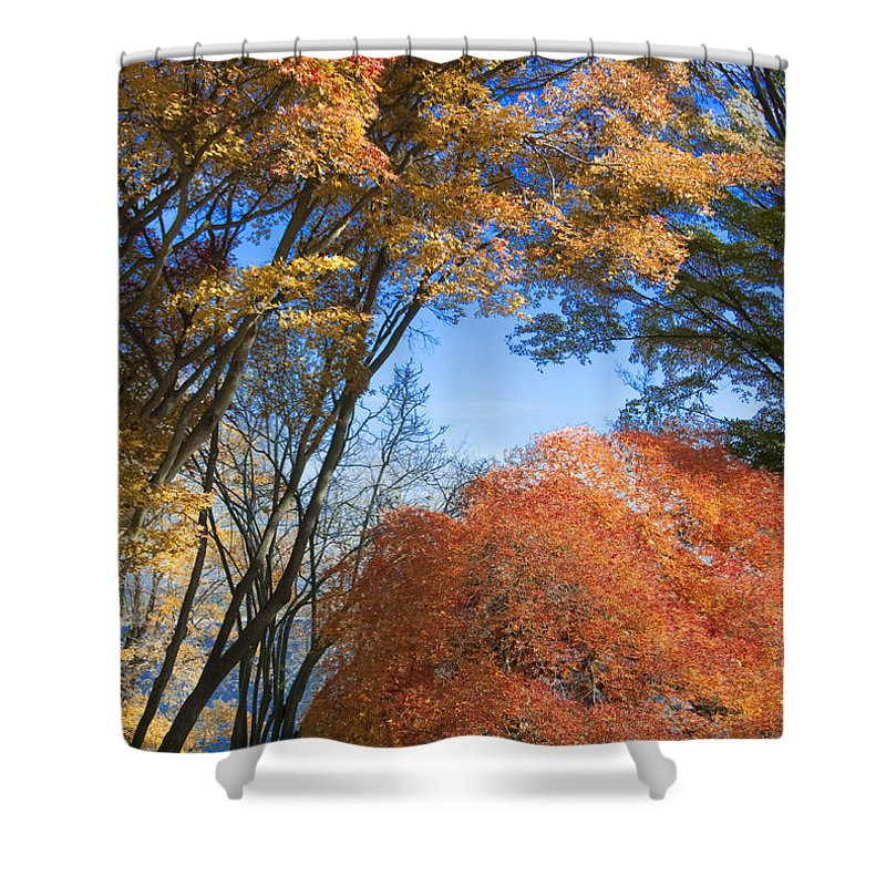 Autumn Shower Curtain featuring the photograph Autumn Day by Steven Natanson