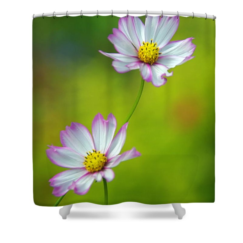 Flowers Shower Curtain featuring the photograph Autumn Flowers by Byron Varvarigos