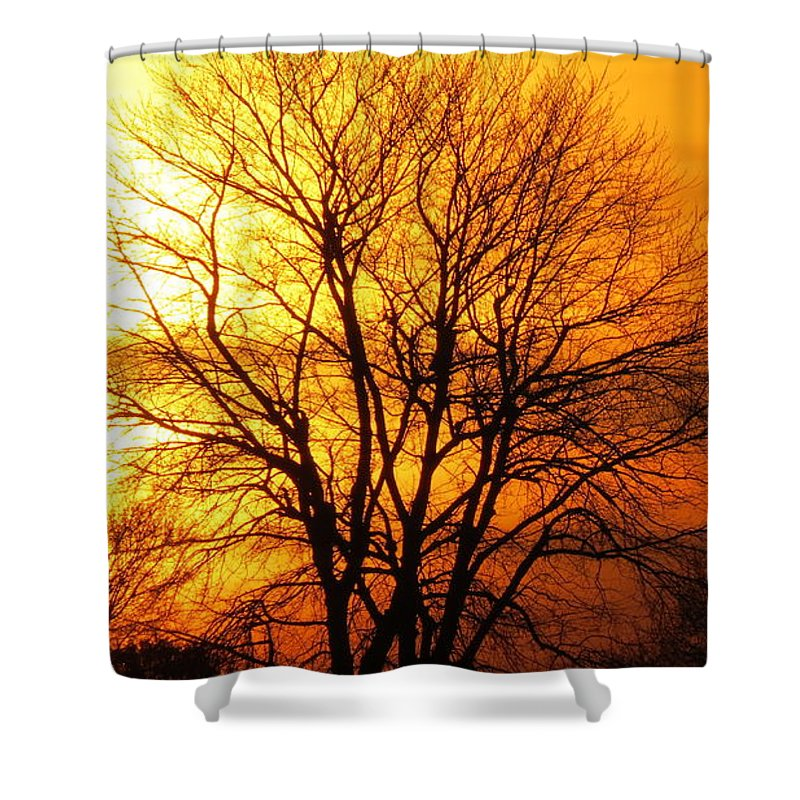 Sunset Shower Curtain featuring the photograph Autumn Glow by Brenda Dowell