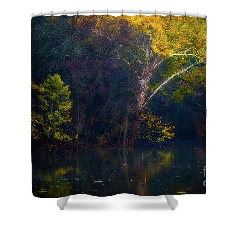 Autumn Gold Shower Curtain featuring the photograph Autumn Gold by Doug Sturgess