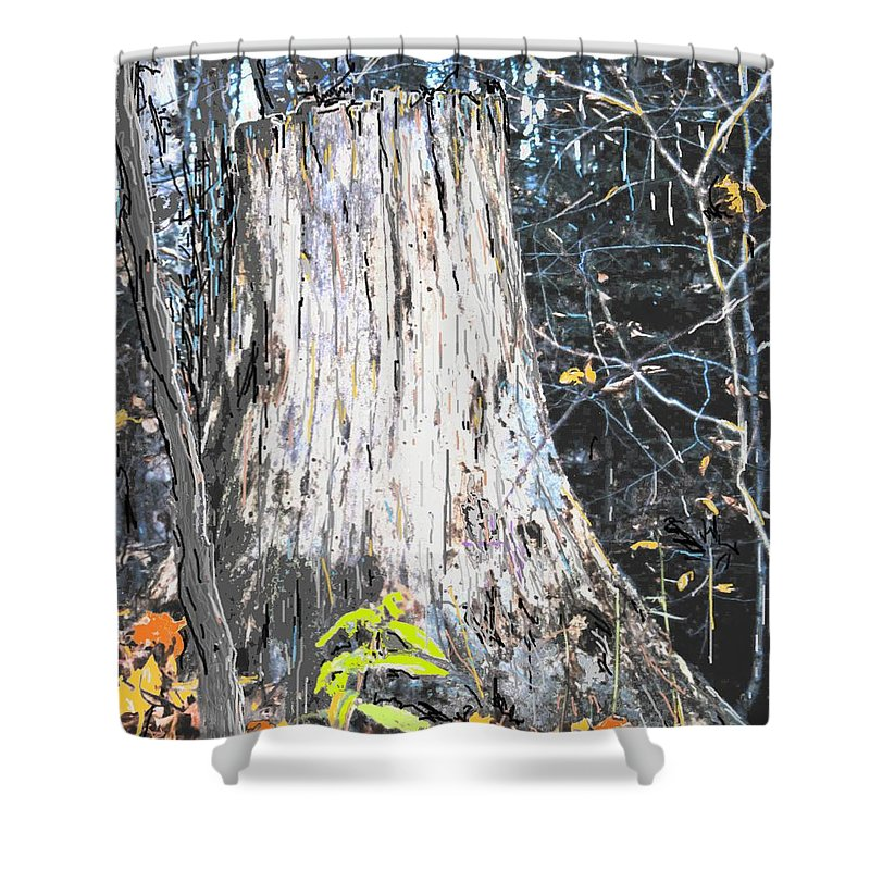 Fall Shower Curtain featuring the photograph Autumn by Ian MacDonald