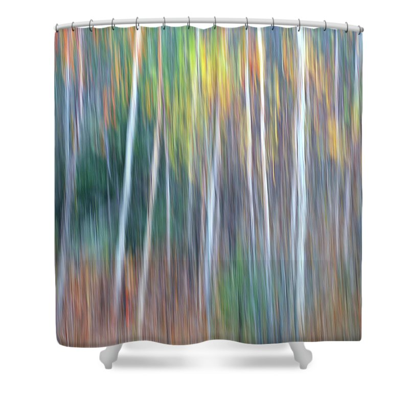 Forest Pastels Form An Autumn Impression Shower Curtain featuring the photograph Autumn Impression by Bill Morgenstern