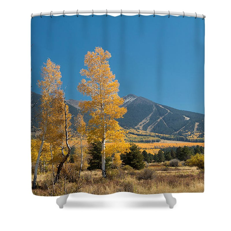 Fall Shower Curtain featuring the photograph Autumn In Hart Pairie by Susan Westervelt