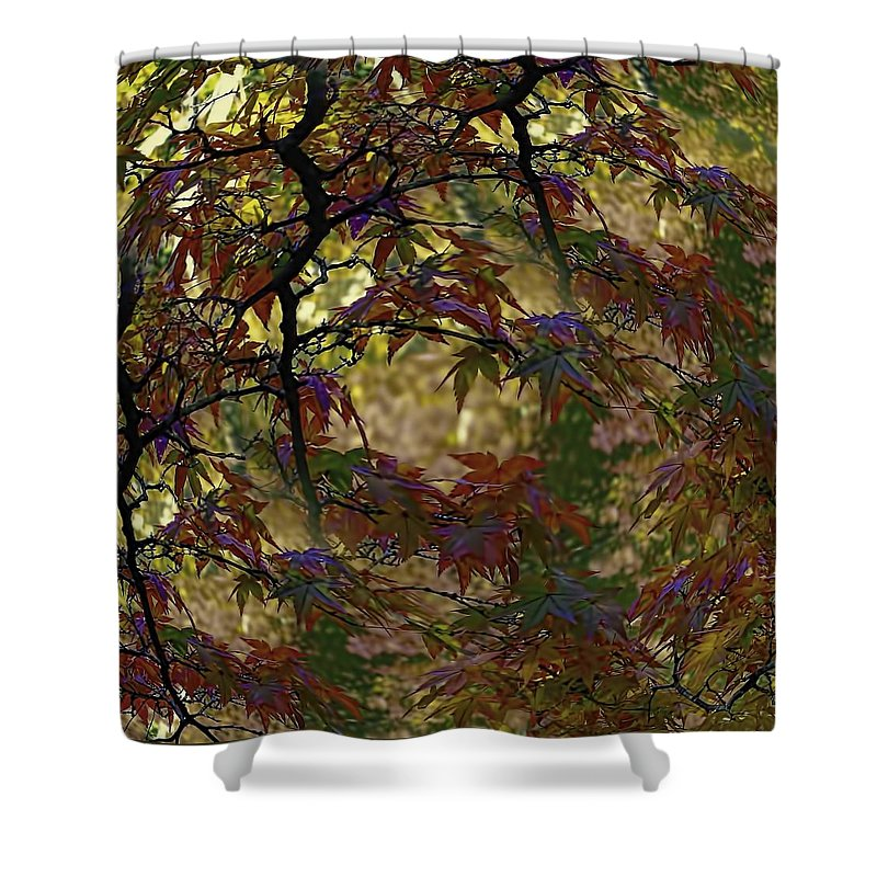 Landscape Shower Curtain featuring the photograph Autumn Leaves In Kyoto by Karen Jensen