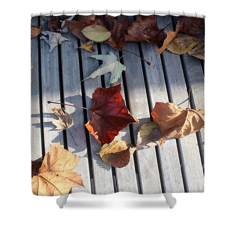 Amy Wilkinson Shower Curtain featuring the photograph Autumn Leaves Three by Amy Wilkinson