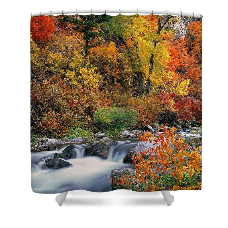Autumn Shower Curtain featuring the photograph Autumn Magic by Leland D Howard