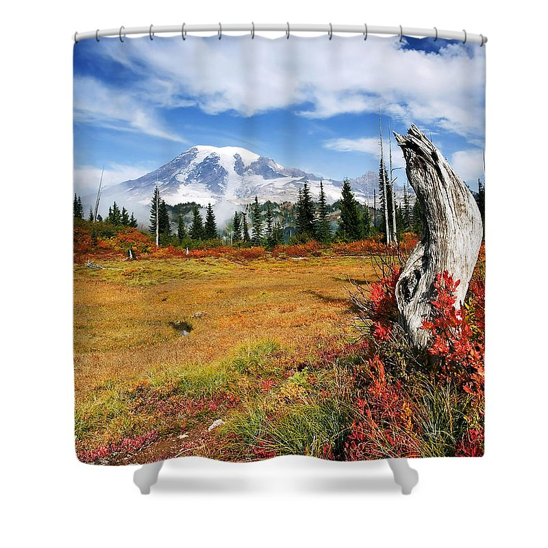 Rainier Shower Curtain featuring the photograph Autumn Majesty by Mike Dawson