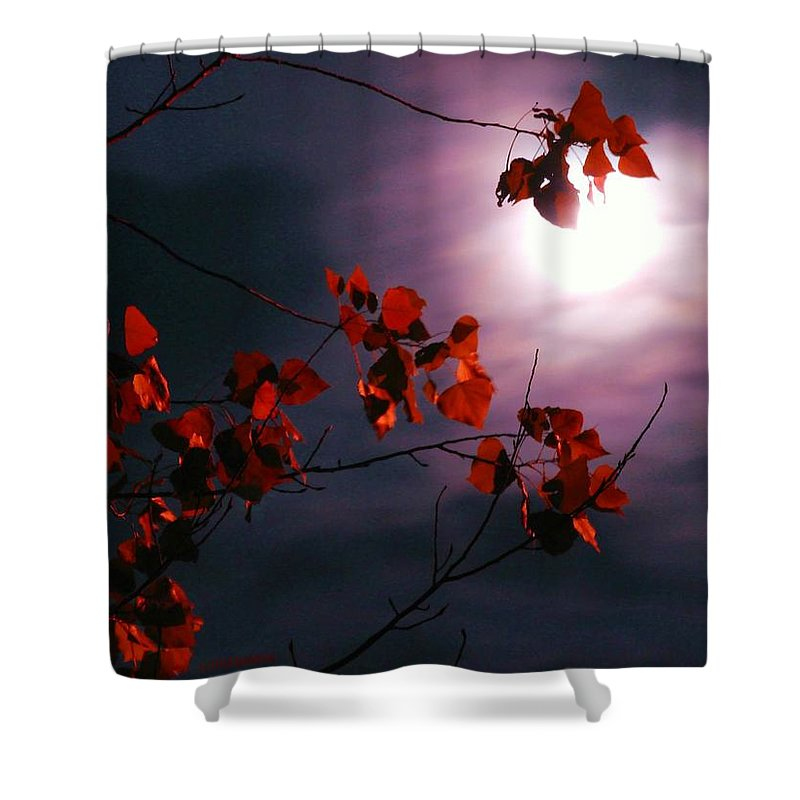 Moon Shower Curtain featuring the photograph Autumn Moon Glow by Patricia L Davidson