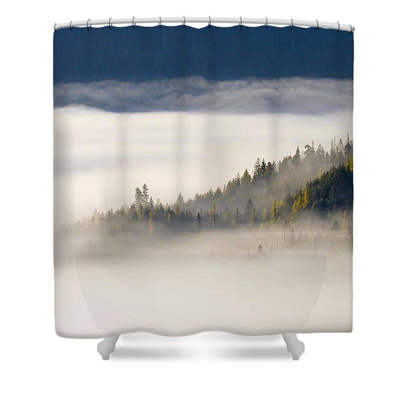 Fog Shower Curtain featuring the photograph Autumn Morn by Mike Dawson