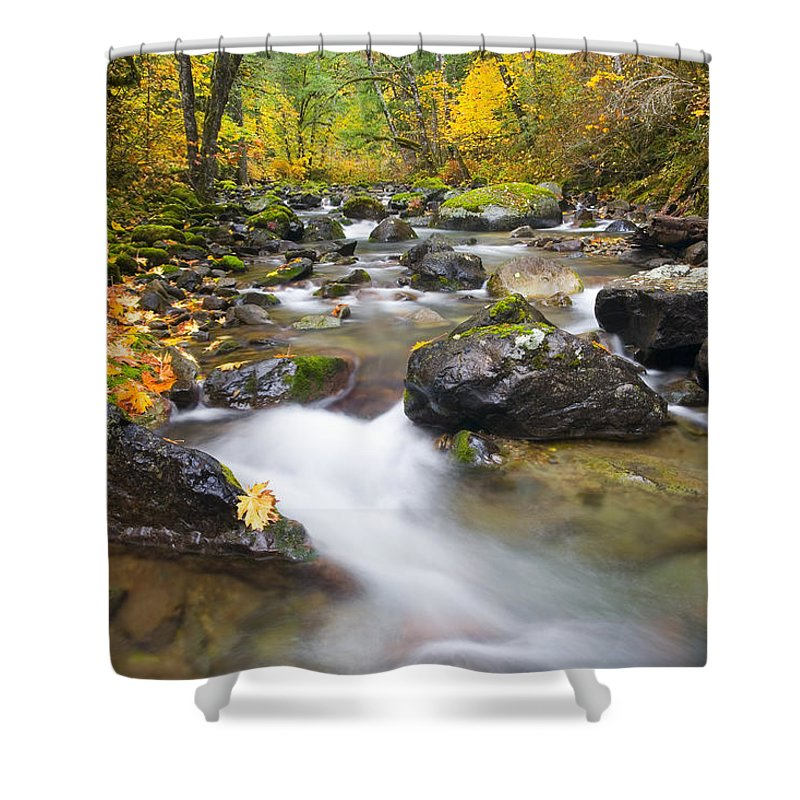 Fall Shower Curtain featuring the photograph Autumn Passing by Mike Dawson