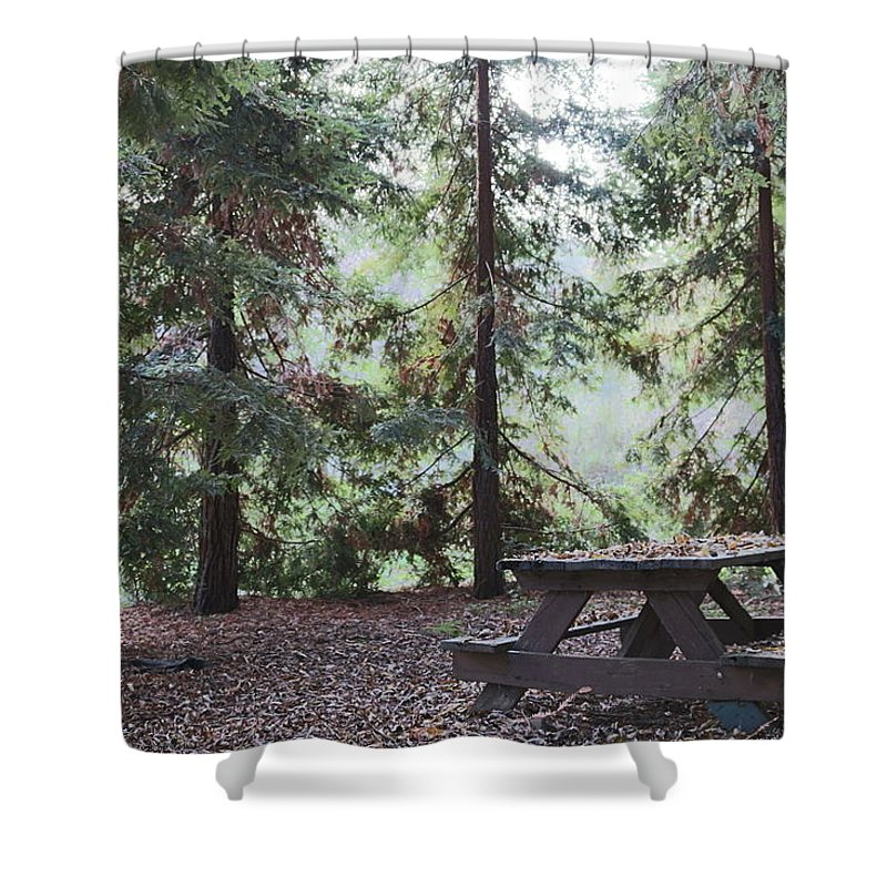 Woods Shower Curtain featuring the photograph Autumn Picnic In The Woods by Christy Pooschke