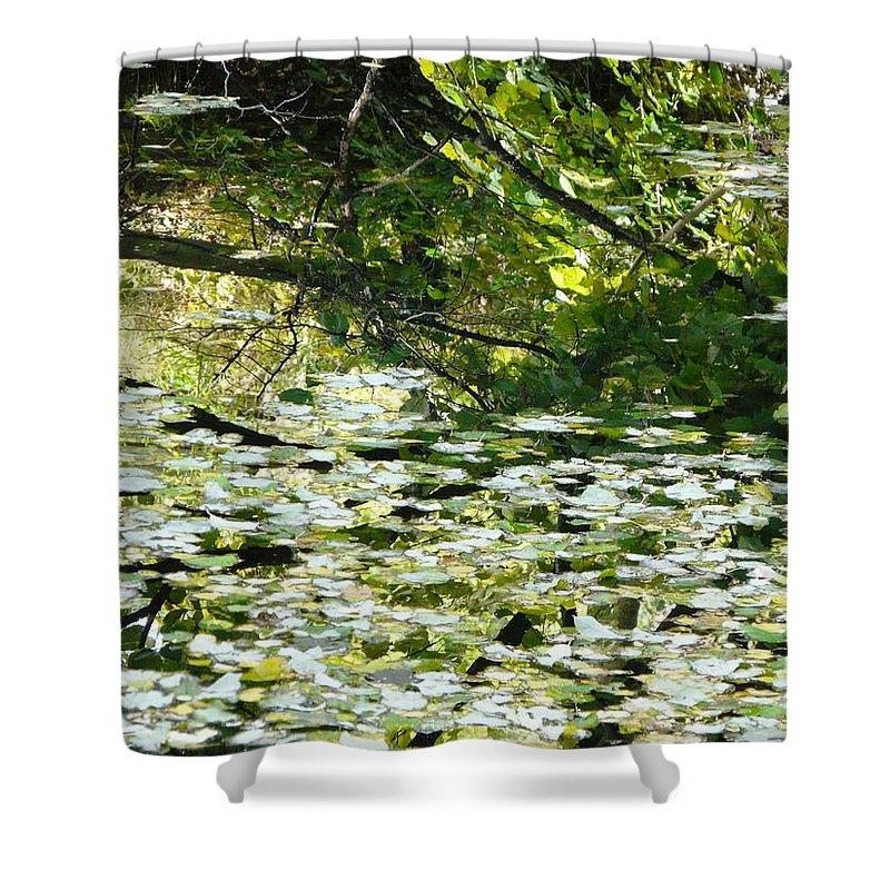 Pond Shower Curtain featuring the photograph Autumn Pond by Valerie Ornstein