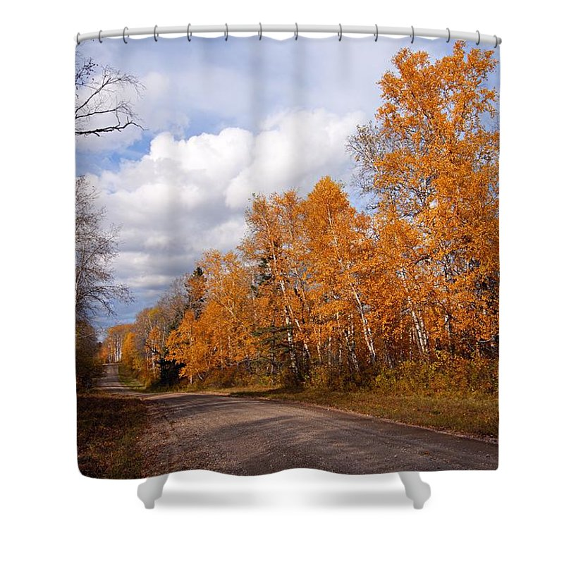 Riding Mountain National Park Shower Curtain featuring the photograph Autumn Road by Larry Ricker