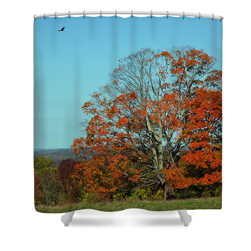 Autumn Shower Curtain featuring the photograph Autumn Scene 2 by June Marie Sobrito