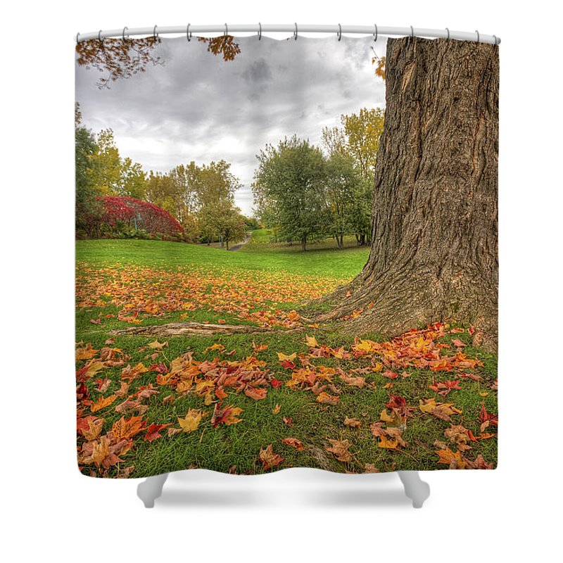 Autumn Shower Curtain featuring the photograph Autumn Tale by Mircea Costina Photography