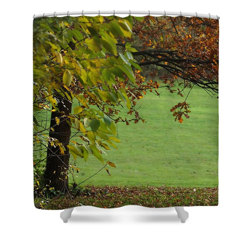 Prott Shower Curtain featuring the photograph Autumn Tree 1 by Rudi Prott