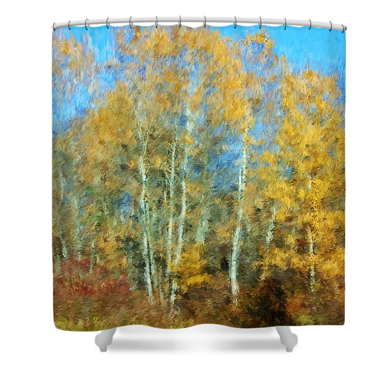 Shower Curtain featuring the photograph Autumn Woodlot by David Lane