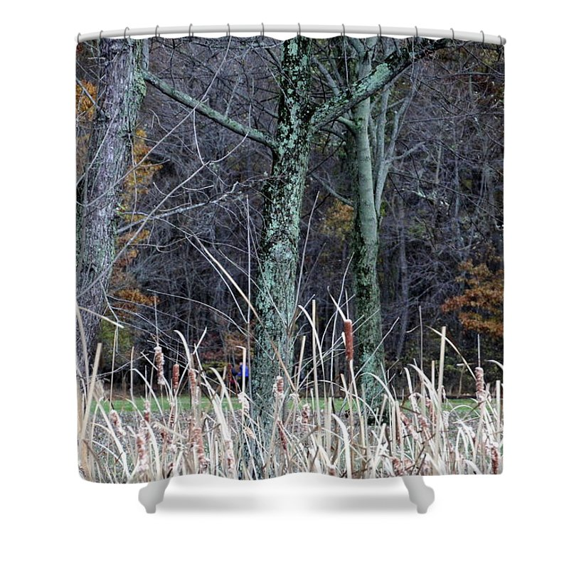 Woods Shower Curtain featuring the photograph Autumn Woods by Valerie Collins