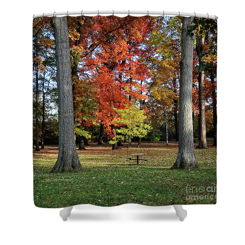 Chris Fleming Shower Curtain featuring the photograph Autumnal Framework by Chris Fleming