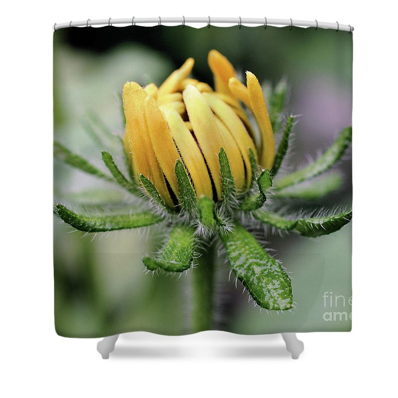 Flower Shower Curtain featuring the photograph Awakening by Smilin Eyes Treasures