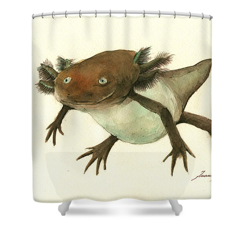 Salamanders Shower Curtains
