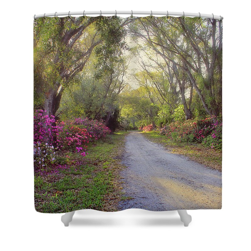 Azalea Shower Curtain featuring the photograph Azalea Lane By H H Photography Of Florida by HH Photography of Florida