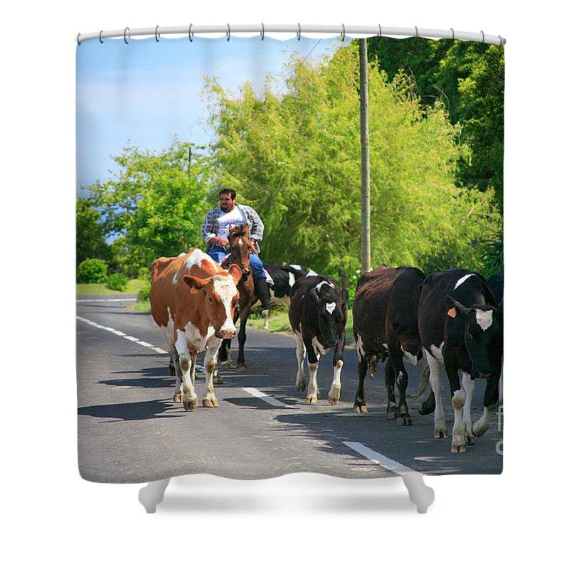 Agriculture Shower Curtain featuring the photograph Azorean Farmer by Gaspar Avila