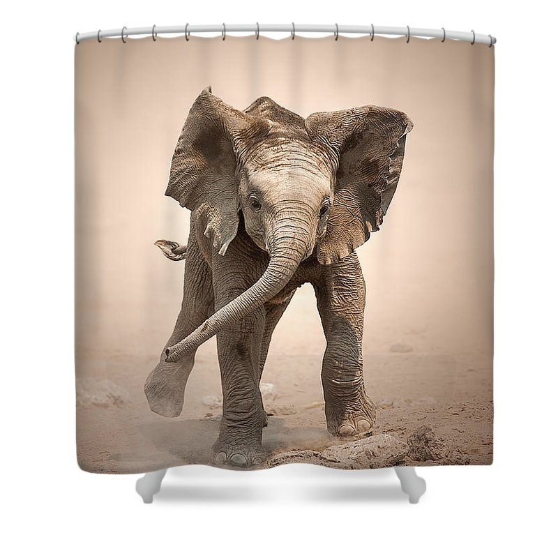 Elephant Shower Curtain featuring the photograph Baby Elephant mock charging by Johan Swanepoel