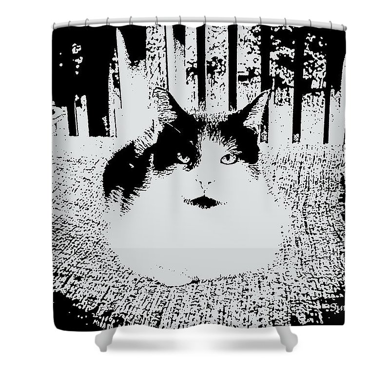 Cat Shower Curtain featuring the mixed media Baby by Robert Orinski