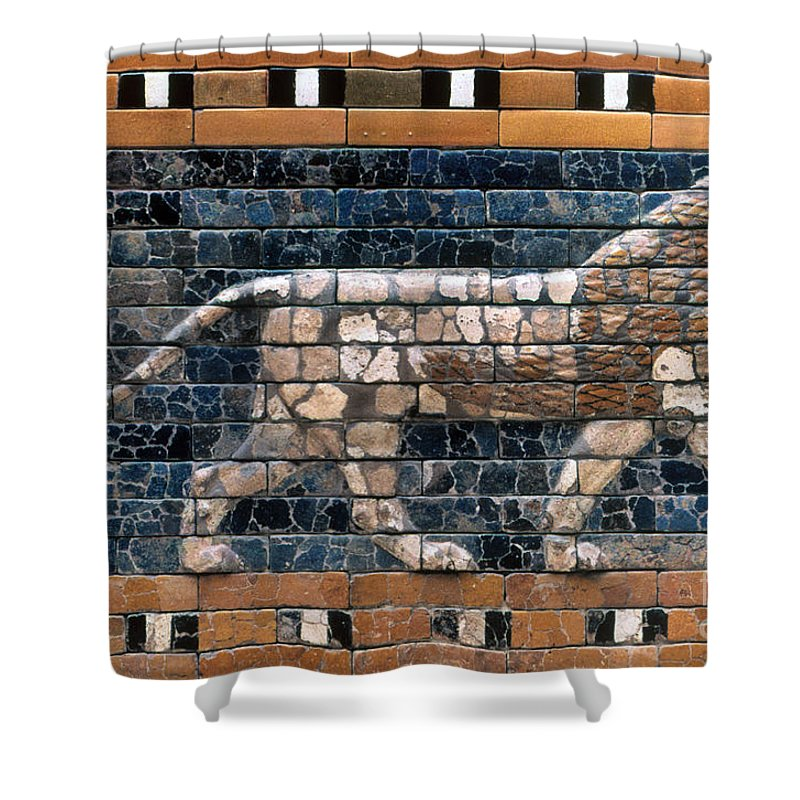6th Century B.c. Shower Curtain featuring the photograph Babylon: Lion by Granger
