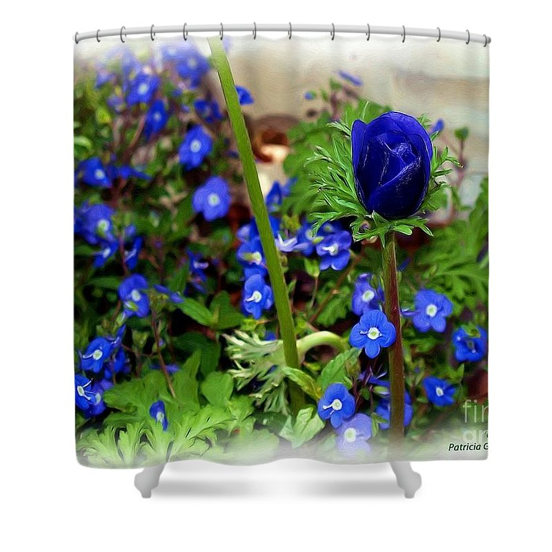 Fine Art Shower Curtain featuring the painting Babys Got the Blues by Patricia Griffin Brett