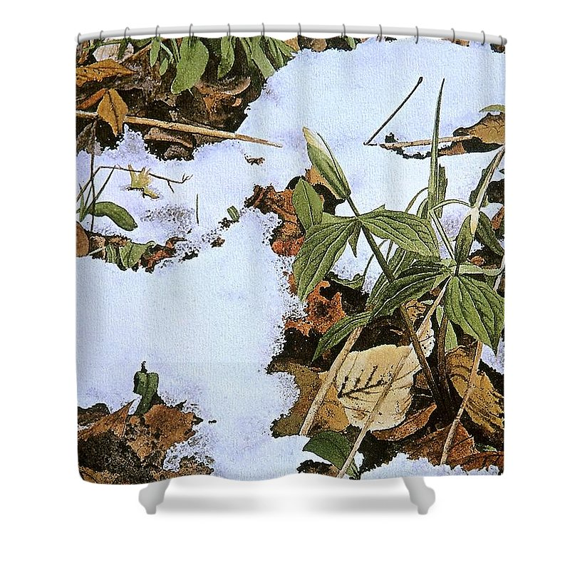 Still Life Shower Curtain featuring the painting Back Forty by Conrad Mieschke