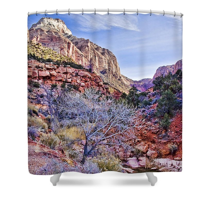 Zion Shower Curtain featuring the digital art Back Of Zion by Ches Black