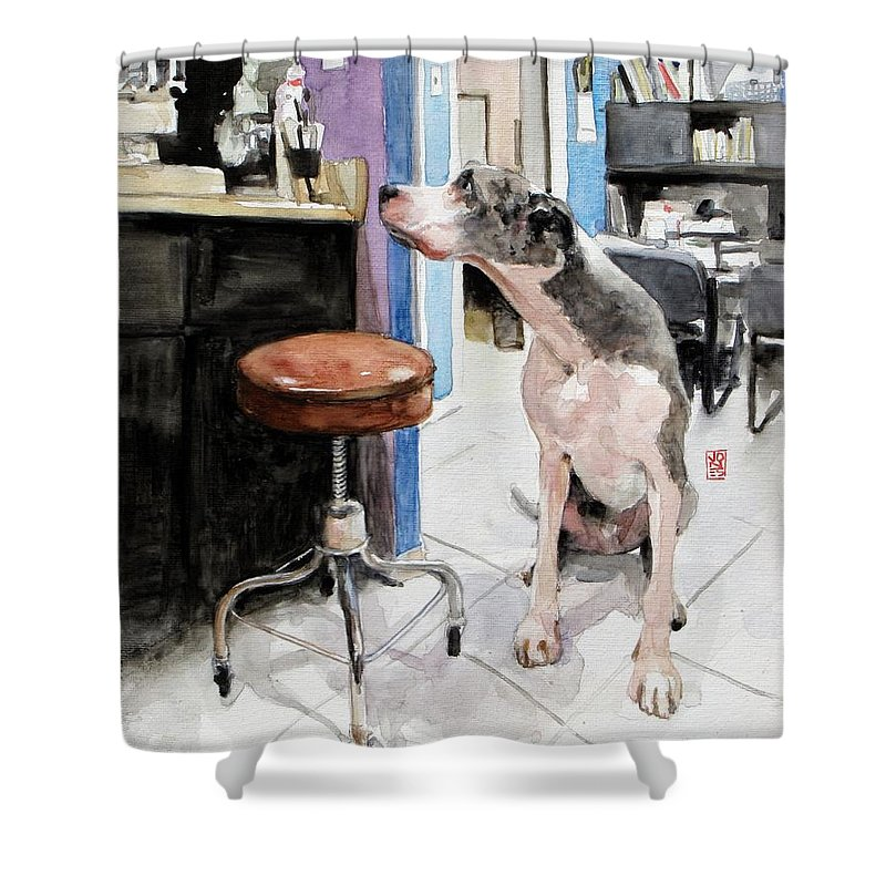 Norman Rockwell Paintings Shower Curtains