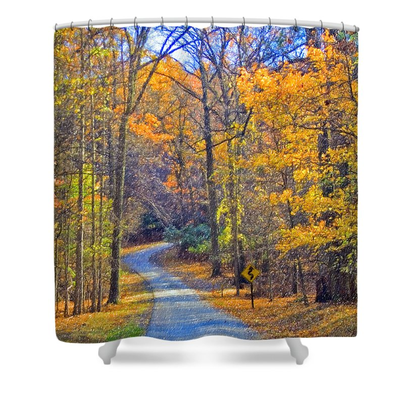 Back Road Fall Colors Foliage Revolutionary Civil War Road Valley Forge Pa Shower Curtain featuring the photograph Back Road Fall Foliage by David Zanzinger