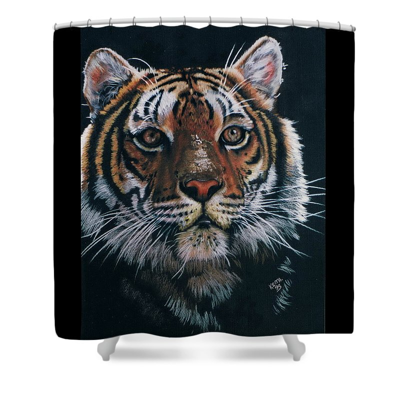 Tiger Shower Curtain featuring the drawing Backlit Tiger by Barbara Keith