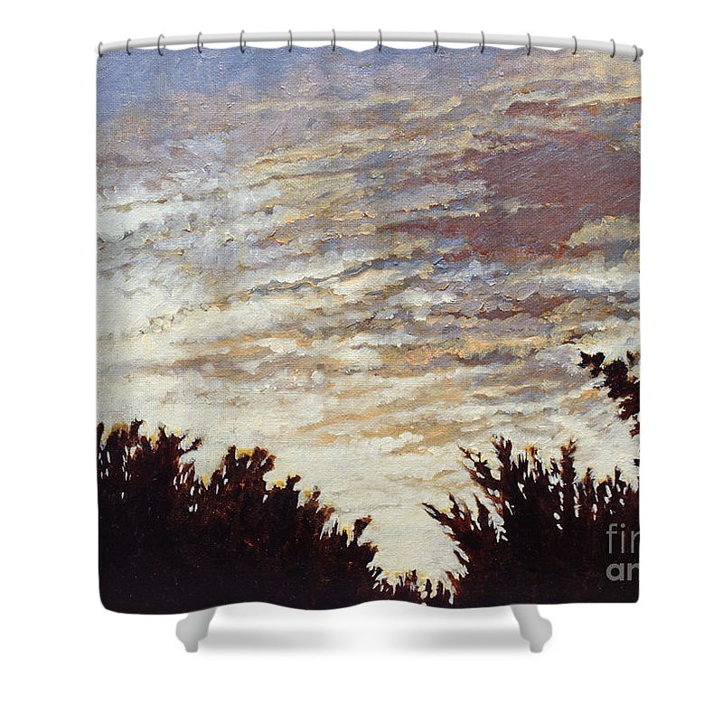 Landscape Shower Curtain featuring the painting Backyard Sunset by Todd Blanchard