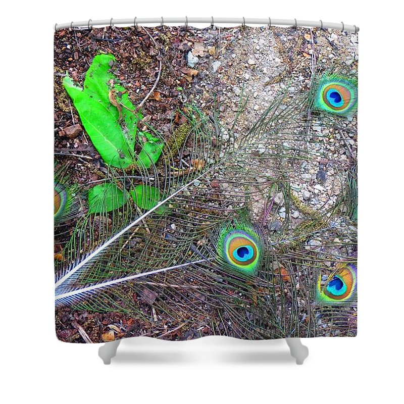 Iowa Shower Curtain featuring the photograph Bad News Art by Connor Ehlers