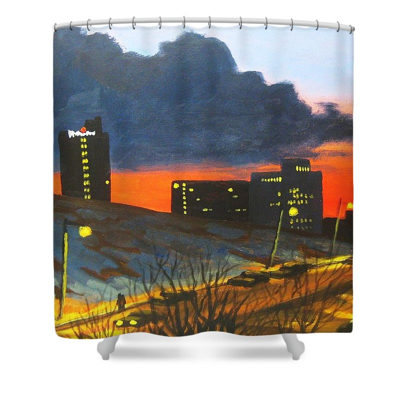Sunset Shower Curtain featuring the painting Balcony View 2 by John Malone