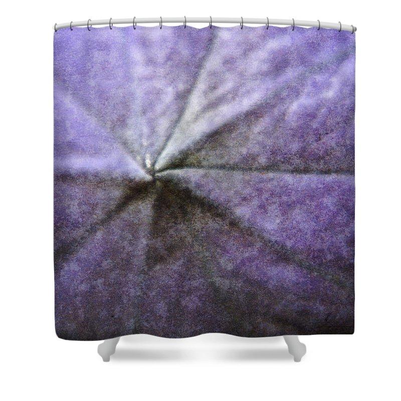 Platycodon Shower Curtain featuring the digital art Balloon Flower by Teresa Mucha