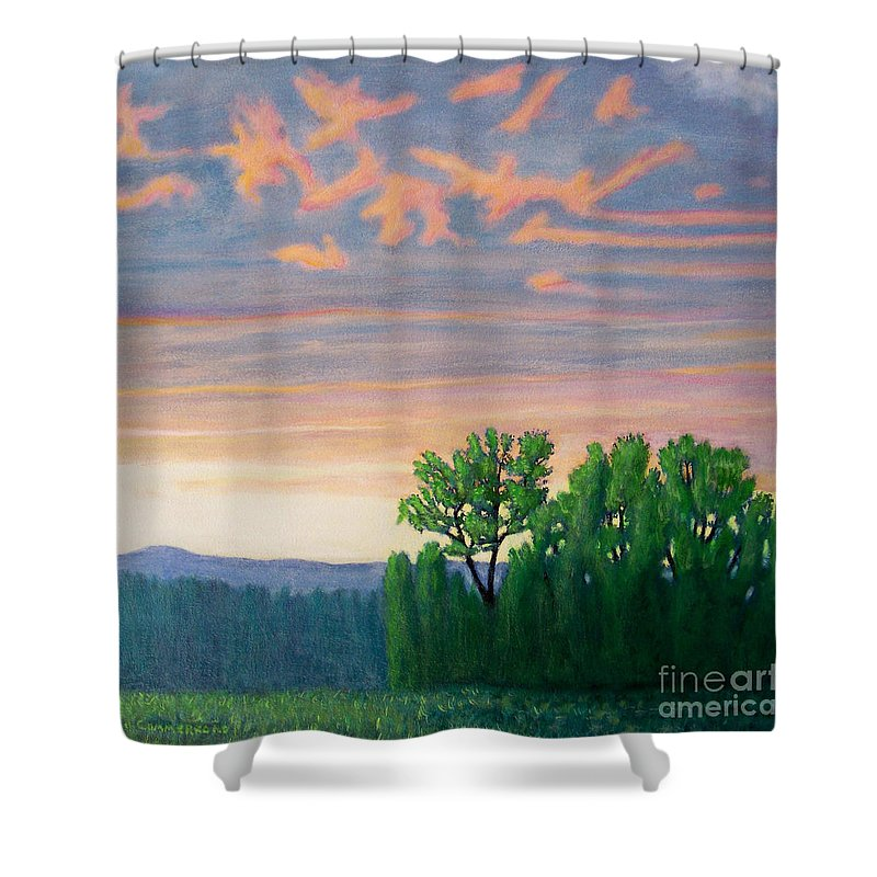 Landscape Shower Curtain featuring the painting Balsa Road by Brian Commerford