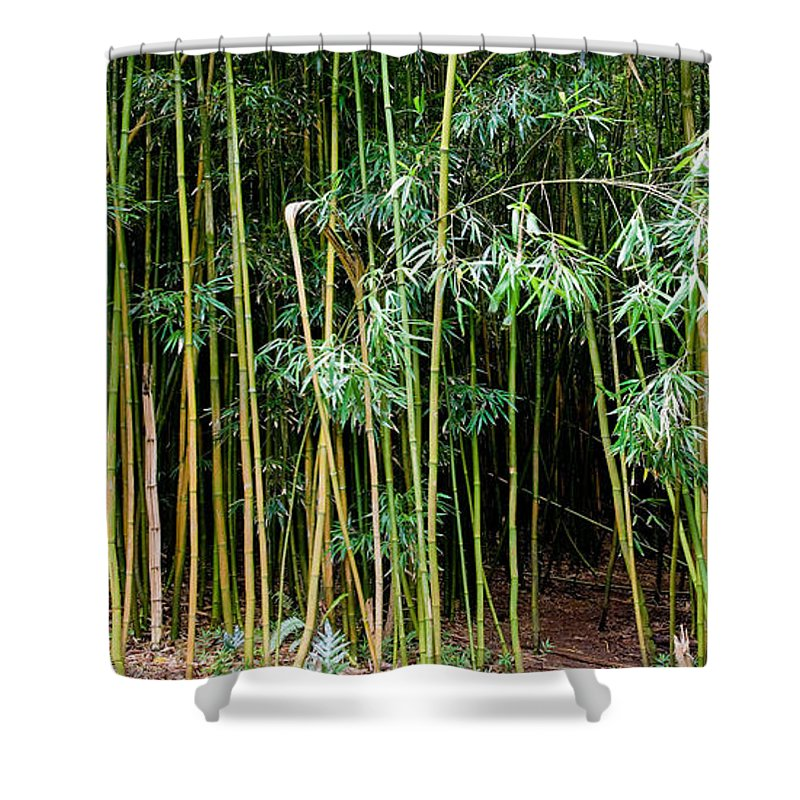 Bamboo Wind Chimes Shower Curtain featuring the photograph Bamboo Wind Chimes Waimoku Falls trail Hana Maui Hawaii by Michael Bessler