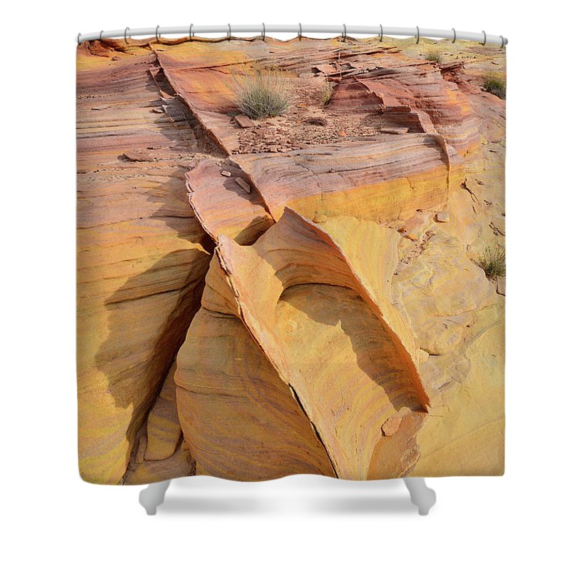 Valley Of Fire State Park Shower Curtain featuring the photograph Band Of Gold In Valley Of Fire by Ray Mathis