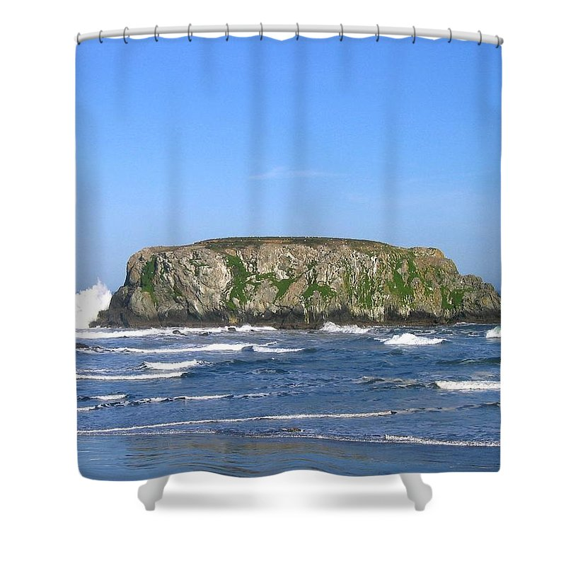 Table Rock Shower Curtain featuring the photograph Bandon 12 by Will Borden