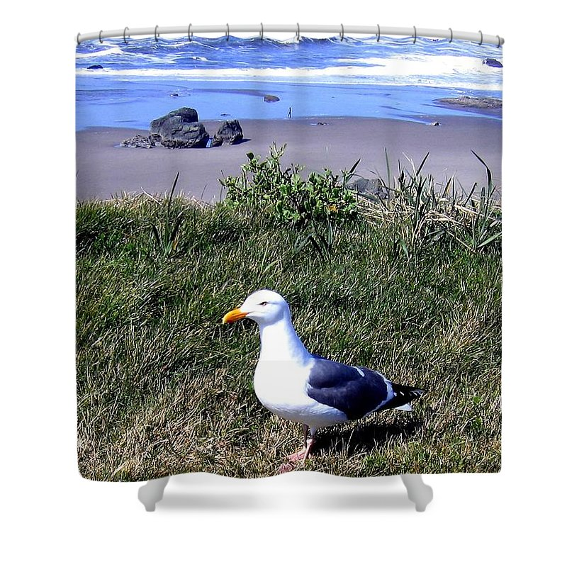 Bandon Shower Curtain featuring the photograph Bandon 37 by Will Borden