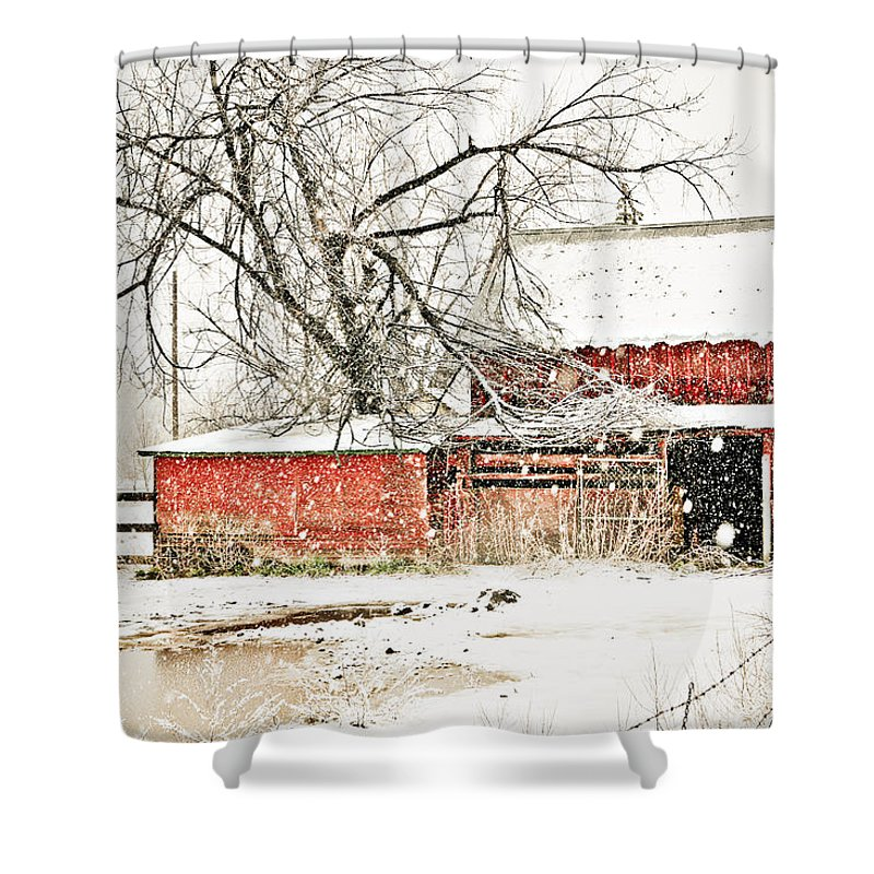 Americana Shower Curtain featuring the photograph Barn And Pond by Marilyn Hunt