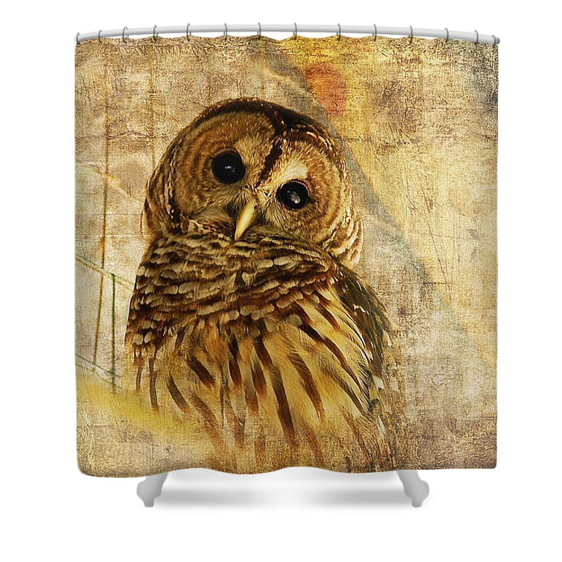 Owl Shower Curtain featuring the photograph Barred Owl by Lois Bryan