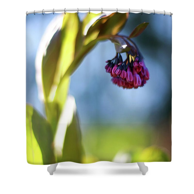 Botanical Shower Curtain featuring the photograph Basking Beauty by Martina Schneeberg-Chrisien