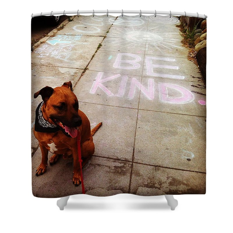 Kind Humanity Dog Love Shower Curtain featuring the photograph Be Kind by Sasha Kay
