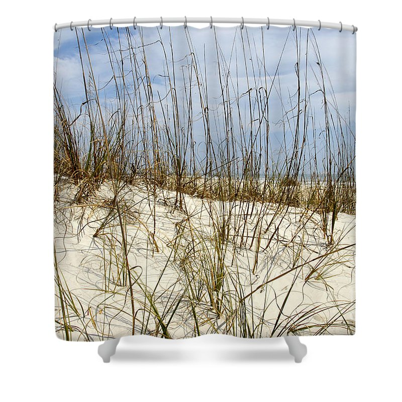 Beach Shower Curtain featuring the photograph Beach Dunes by David Lee Thompson